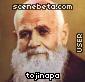 Imagen de tonijapa